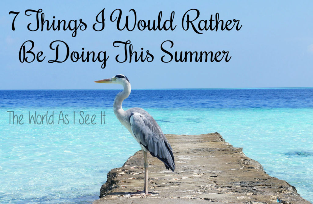 7 Things I Would Rather Be Doing This Summer