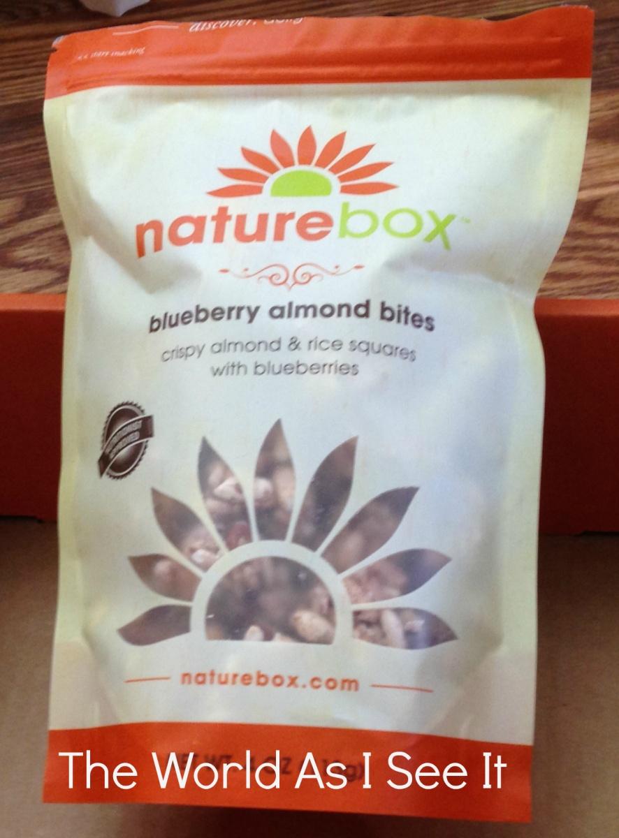 Blueberry Almond Bites