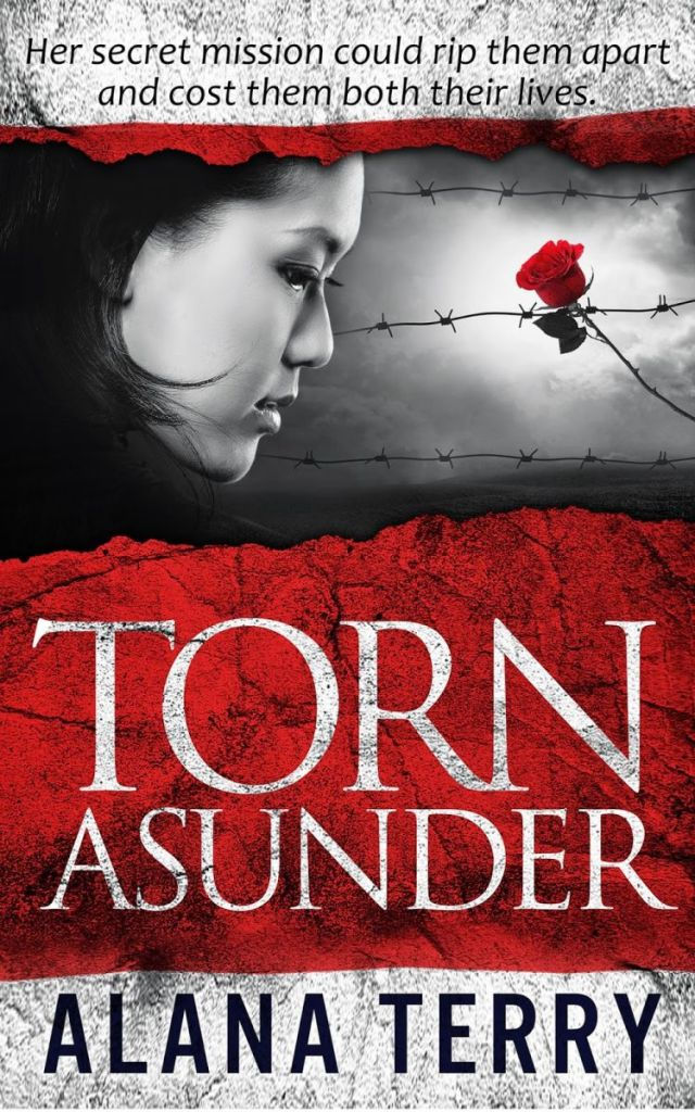 Torn Asunder - Ebook Small
