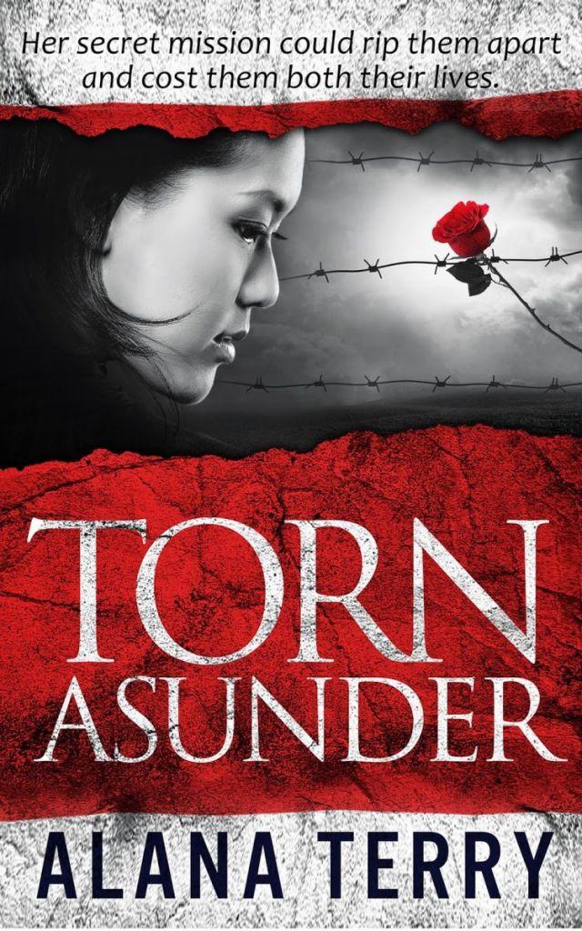 Torn Asunder - Ebook Small